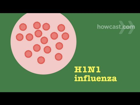 How to Prevent & Recognize Symptoms of Swine Flu