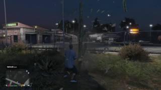Grand Theft Auto V Cactus