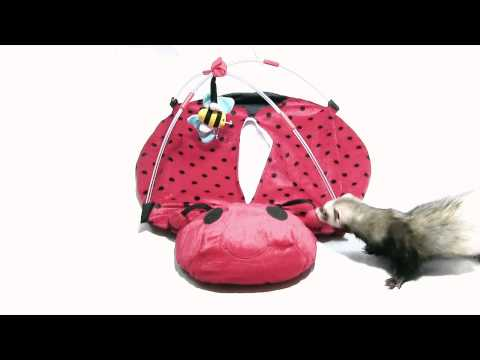 Marshall Pet Products - Bed Bug Play Center