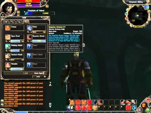 Runes of Magic - Duel wield