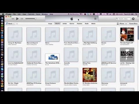 My iTunes Genius Disappeared : iTunes Basics