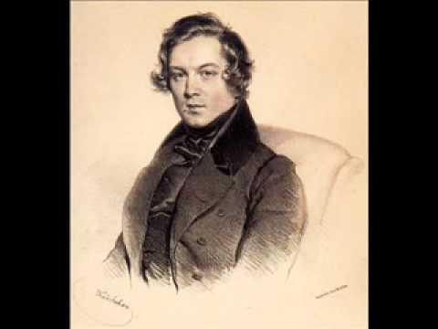 Robert Schumann's Fantasiestücke, Op. 12.wmv