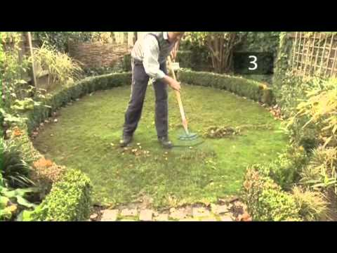 Autumn Lawn Care Tips and Maintenance Advice