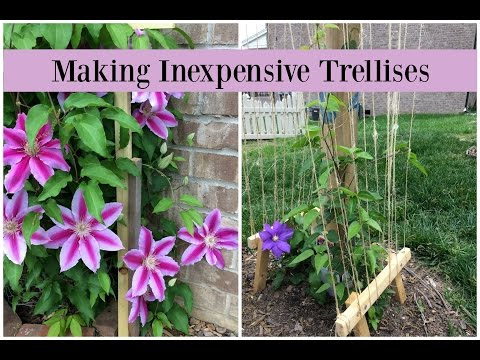 Making Inexpensive Trellises