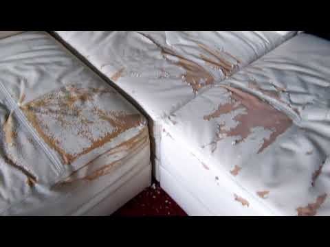 Warning: Bonded leather couch peeling.
