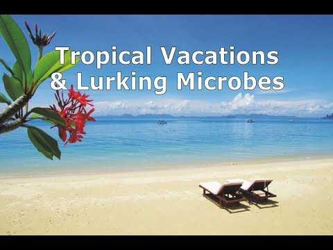 Tropical Vacations & Lurking Microbes