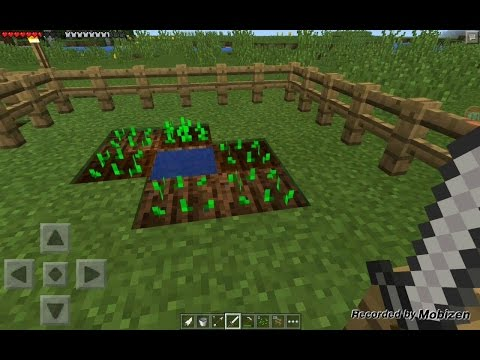 Minecraft PE survival/Ep4:Grow Potato ! Grow !