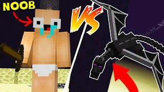 NOOB VS. ENDERDRAGON! (EPISODE 27)