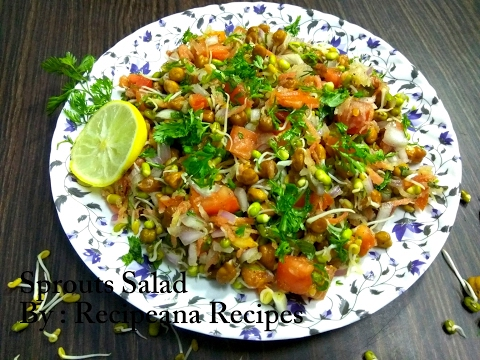 Sprouts Salad   How to make Sprouts Salad at Home    Recipeana