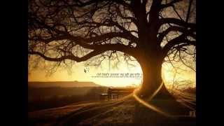 Elisa - Rock Your Soul
