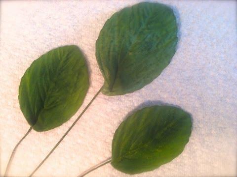 How to Make a Gum Paste Rose Leaf