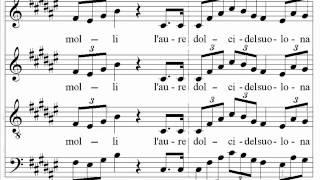 Verdi  Nabucco  Va Pensiero  Santa Cecilia Choir And Orchestra