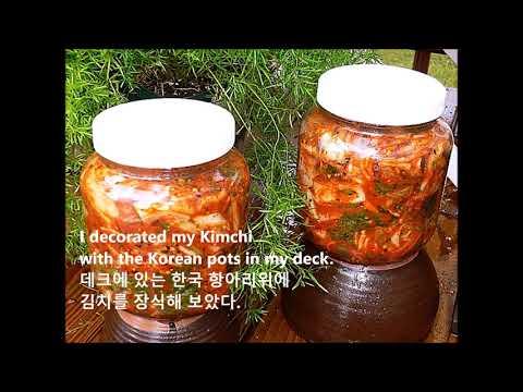 My Kim-chi Diary (25 Created Kim-chi from 2007 to 2010 )