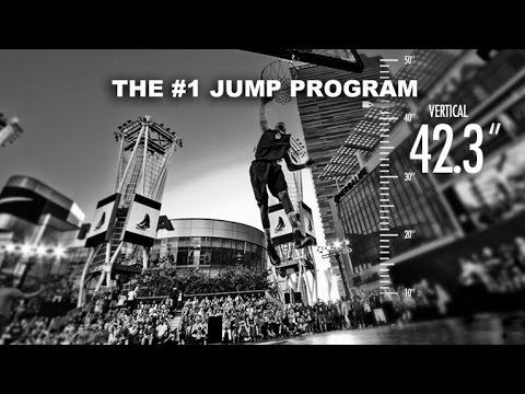 The Best Vertical Jump Training Program to Increase Your Vertical