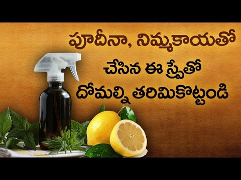 Natural Home Remedy to assassinate Mosquitoes   Pudina and Lemon Juice    Health Tips   VTube Telugu