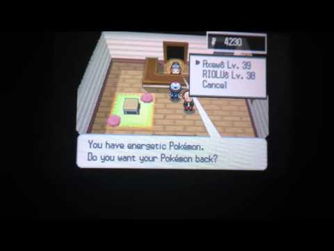 Day care level up for pokemon black and white