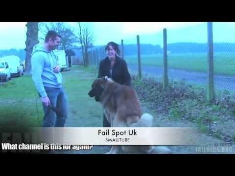 Xxx Mp4 Dog Has Sexual Intercourse Fail Fail Spot UK 3gp Sex