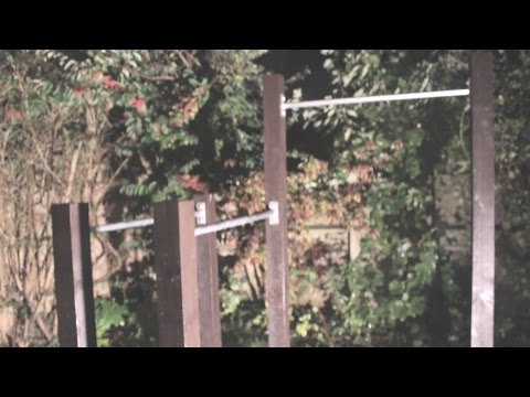 Outdoor pull up bars (calisthenics x street workout)
