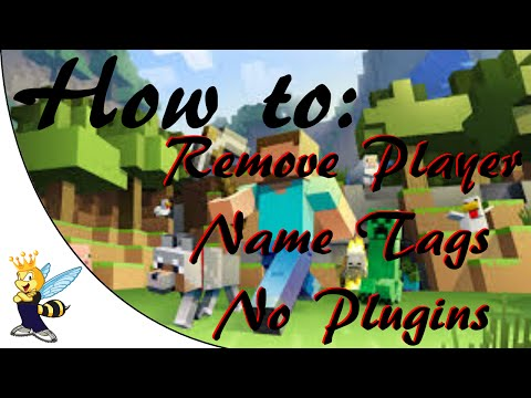 How To Change/Remove Player Name Tags In Minecraft
