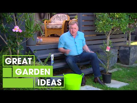 Tree Planting 101 | Gardening | Great Home Ideas