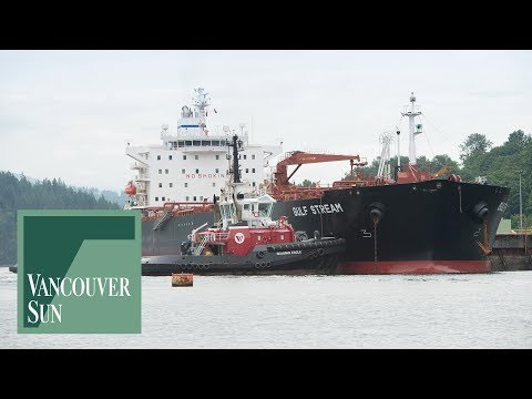 Clean coastal waters a priority, pipeline poll shows | Vaughn Palmer | Vancouver Sun