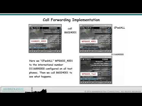 Enterprise 20 Dial Plan Build - Call Forwarding and Voice Mail (Part 2)