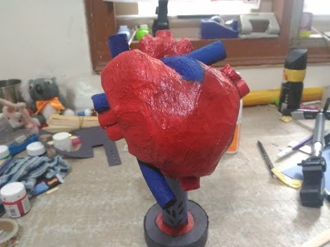 HOW TO MAKE A HUMAN HEART REALISTIC MODEL FOR PROJECT PURPOSE