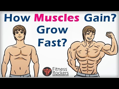 How to gain muscles fast | how muscles grow & what makes muscles grow | Bodybuilding tips Hindi