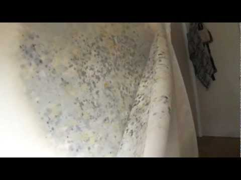 Tempur-Pedic Mattress; 9 month old found with  MOLD