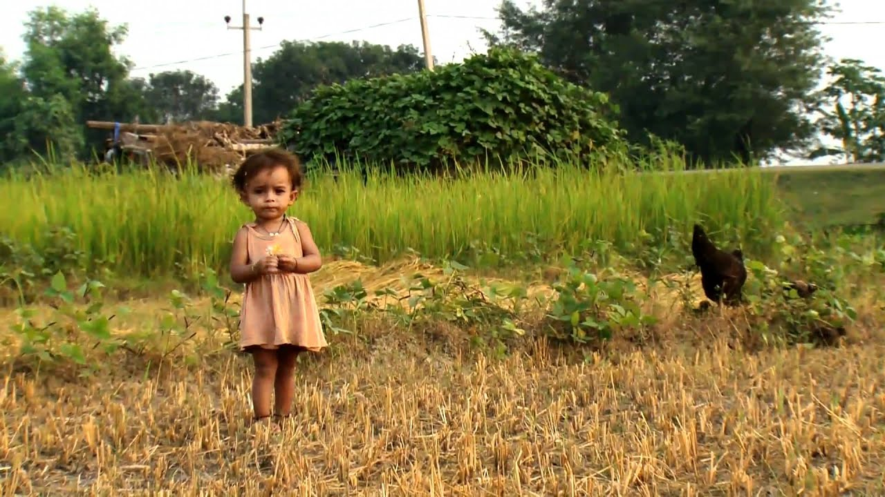 FAO in Nepal - Documentary version part 1/2