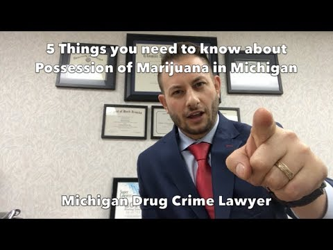 5 Things To Know About Possession of Marijuana In Michigan