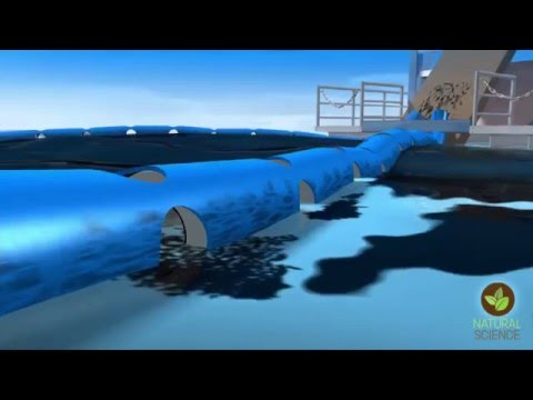 How to clean up an oil spill –magnetize the oil first | Arden Warner | TEDxNaperville