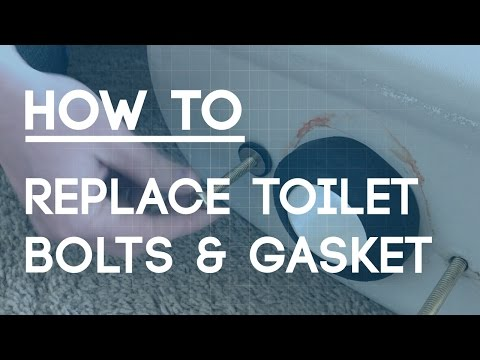 How to Replace Toilet Bolts and Gasket - Fix a Leaky Toilet