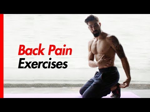 Back Pain Relief Exercises (3 BEST Back Stretches for Back Pain)