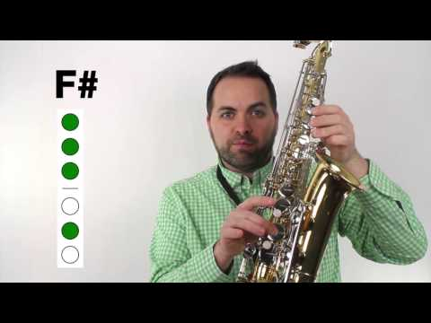 Alto Sax Beginner Song - Major Duple