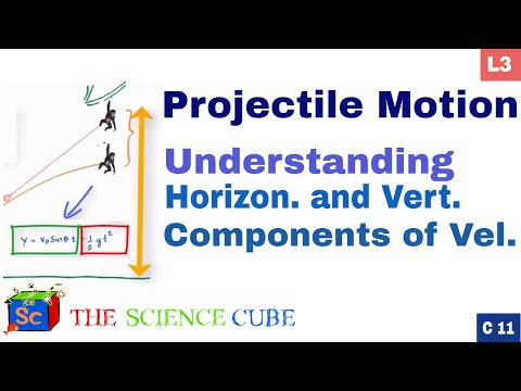 Why Vertical Velocity changes & Horizontal does not? #3