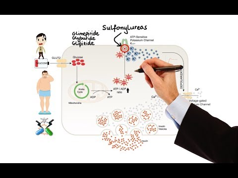 Pharmacology - DRUGS FOR DIABETES (MADE EASY)