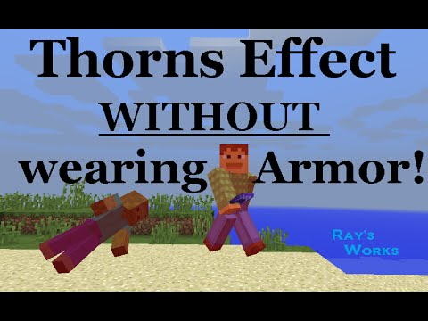 How to get the Thorns Effect WITHOUT wearing Armor!- 1.12-1.9+ Vanilla Survival | Ray's Works