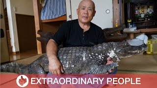 Brave Man Lives With Pet Caiman