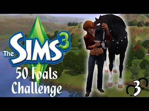 Let's Play: The Sims 3 50 Foals Challenge - Part #3 - Horse Racing and Pregnancy!