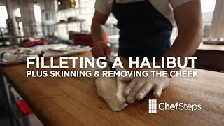 Filleting A Halibut Plus Skinning And Removing Cheek