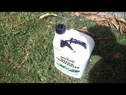 Keep weed and grass kill poison off your hands - cheap