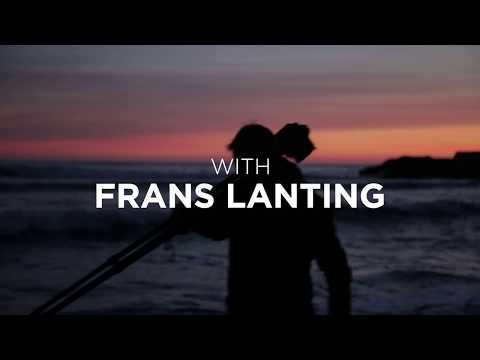 The Art Of Seeing (Official Trailer) with Frans Lanting