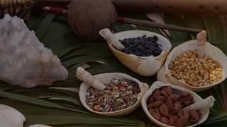 Boda Maya Prehispanica - Prehispanic Mayan Wedding : Spirituality Riviera Maya