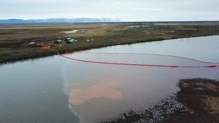 Russia oil spill: Putin declares state of emergency over pollution in Arctic Circle