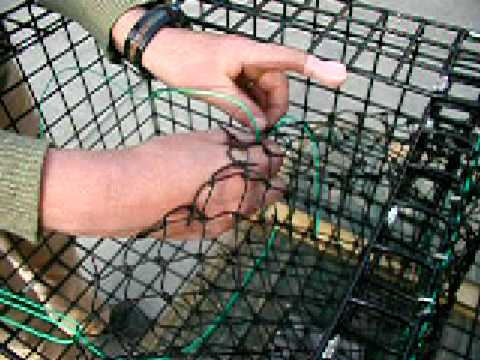 How to Build a Lobster Trap: 15 Rigging the Parlour