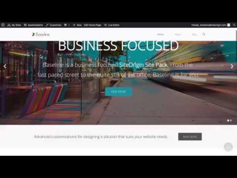 Baseline - Free Business WordPress Website