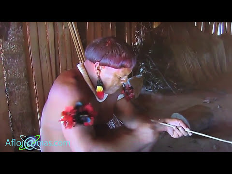 Xxx Mp4 Naked Tribe Village From Amazon Натуризм Индейцы с Амазонка 3gp Sex