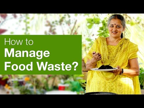 Love food hate waste! Waste Management | Organic Terrace Garden