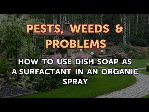 How to Use Dish Soap as a Surfactant in an Organic Spray